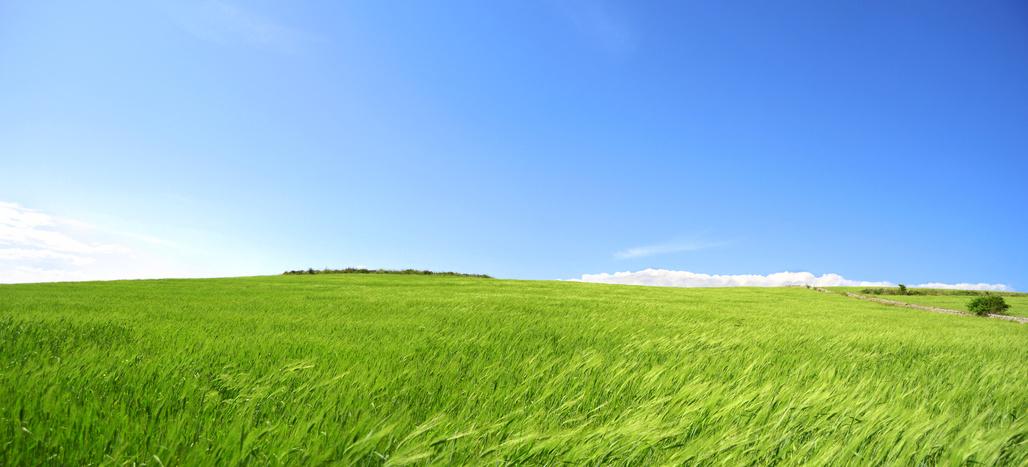 Collina con prato verde e cielo azzurro terra pianeta for Prato verde